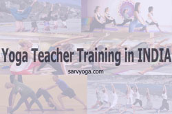 Yoga teacher training in India 2017-2018