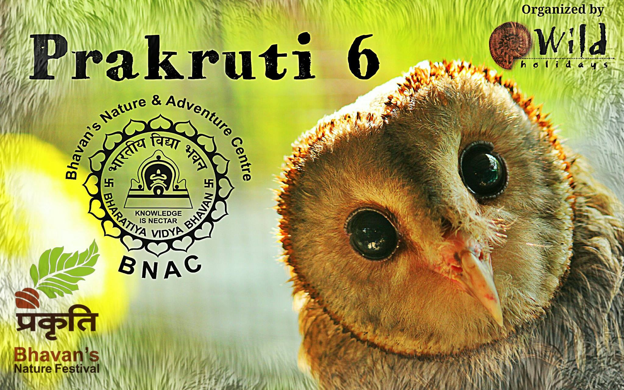 Prakruti Nature Festival