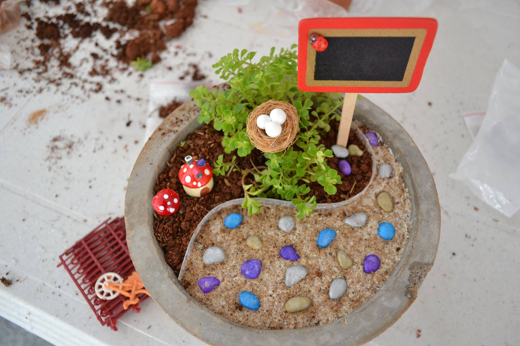 DIY Miniature Gardening Workshop Chd/Pkula