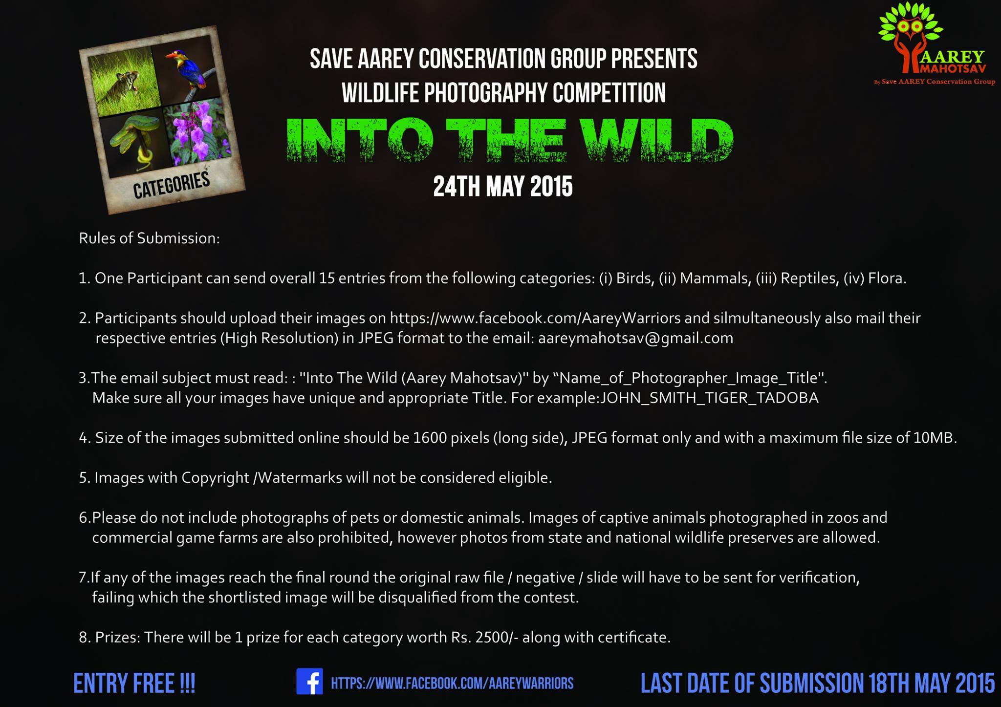 'Into The Wild' - Wildlife Photography Exhibition