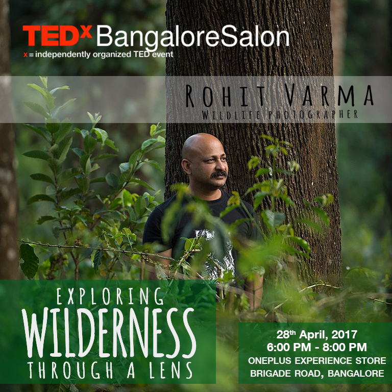 Explore wilderness through the lens of Rohit Varma at TEDxBangalore Salon