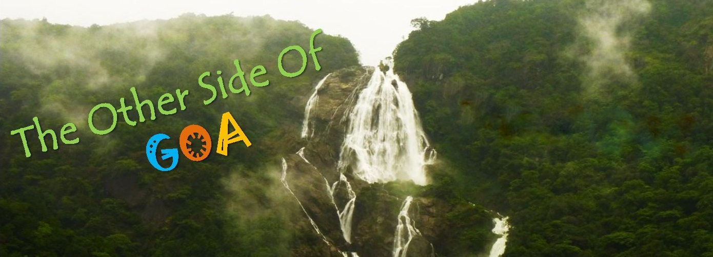 The Other Side Of Goa! (Dudhsagar Trek & Camping)